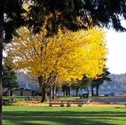Belfair State Park