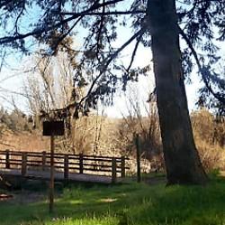 Molalla River State Park