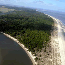Blackbeard Island National Wildlife Refuge