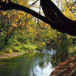Franklin Creek State Park