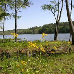 Paul Grist State Park
