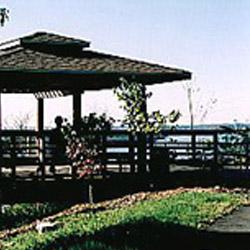 Bee Tree Park