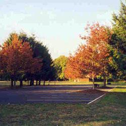 Armitage County Park