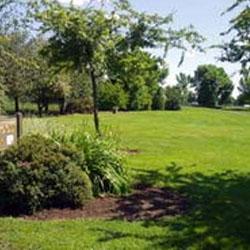 Brentwood Park