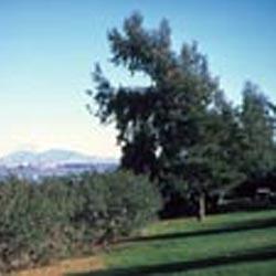 Benicia State Recreation Area