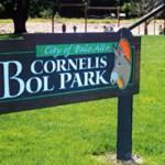 Bol Park