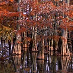 Delta Heritage Trail State Park