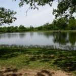 Adair State Park