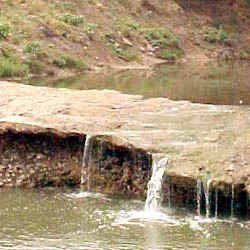 Trinity River Mountain Creek Preserve