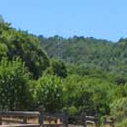 China Camp State Park