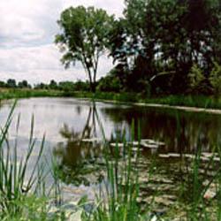 Edna Taylor Conservation Park