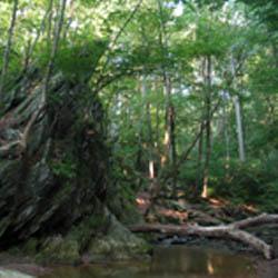 Parker Natural Area