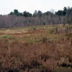 Deep Fork National Wildlife Refuge