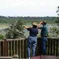 Handy Brake National Wildlife Refuge