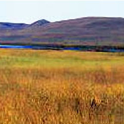 Valentine National Wildlife Refuge