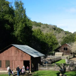 Deer Hollow Farm