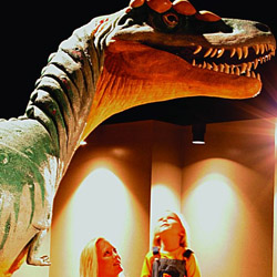 Anniston Museum of Natural History