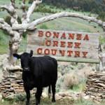 Bonanza Creek Guest Ranch