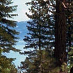 Ed Z'berg Sugar Pine Point State Park
