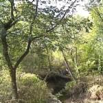 Annie Louise Wilkerson, MD Nature Preserve Park