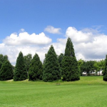 Adanac Park