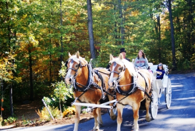 fall-color-carriage-rides-02